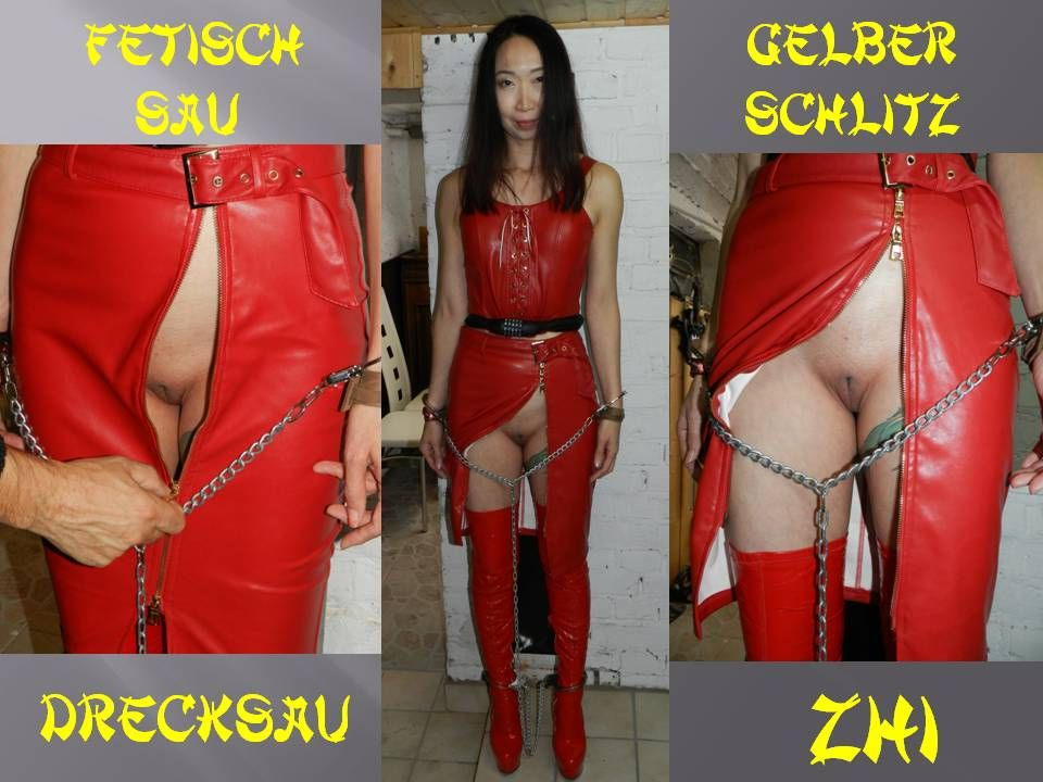 Zhi drecksau Drecksau translation